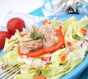 A fresh salad with fish Royalty Free Stock Photos