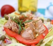Fresh salad with fish Royalty Free Stock Photo