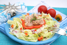 A fresh salad with fish Stock Image