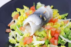 Fresh salad with fish Stock Photography