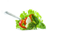 Fresh Salad Food Styling. Red pepper, white cheese, lettuce salad in a fork Royalty Free Stock Images
