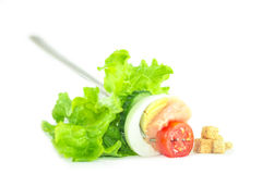 Fresh Salad Food Styling. Red tomato slice, egg, lettuce and cucumber salad in a fork Royalty Free Stock Photos
