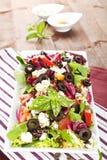 Fresh salad with fresh herbs. Stock Image