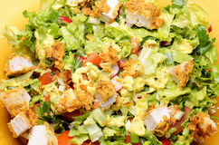 Fresh Salad. With Fried Chicken And Vegetables Stock Image