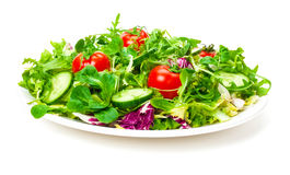 Fresh Salad. In front of white background Royalty Free Stock Photography