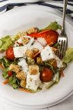 Fresh salad with garlic sauce on a plate Royalty Free Stock Photography