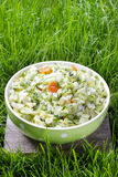 Fresh salad in green dotted bowl Stock Images