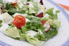 Fresh salad Royalty Free Stock Photography