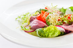 Fresh salad with greens and meat Stock Images