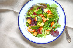 Fresh salad greens with small tomatoes Stock Photography
