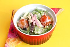 Fresh salad with ham and cheese. Some fresh salad with ham and cheese Royalty Free Stock Image