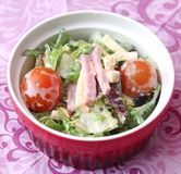 Fresh salad with ham and cheese. Some fresh salad with ham and cheese Stock Image