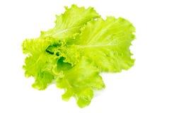 Fresh salad isolated on white Stock Photos