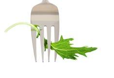 Fresh salad leaf on fork isolated on white Stock Image