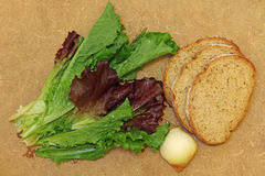 Fresh salad leafes and bread on wooden background. Stock Image