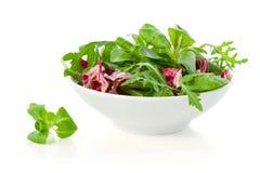 Fresh salad leaves Stock Photo