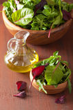 Fresh salad leaves in bowl: spinach, mangold, ruccola Royalty Free Stock Photo