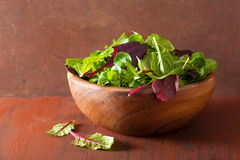 Fresh salad leaves in bowl: spinach, mangold, ruccola Stock Photo