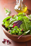 Fresh salad leaves in bowl: spinach, mangold, ruccola Stock Image