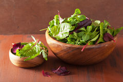 Fresh salad leaves in bowl: spinach, mangold, ruccola Royalty Free Stock Image