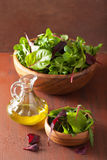 Fresh salad leaves in bowl: spinach, mangold, ruccola Stock Photography
