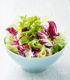 Fresh salad leaves mix Stock Photo