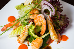 Fresh salad leaves with shrimp Stock Photos