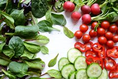 Fresh salad leaves and vegetables Royalty Free Stock Image
