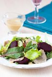 Fresh salad with lettuce leaves, boiled beef, beet, mustard Stock Photography
