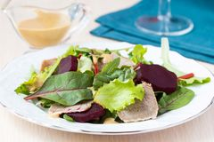 Fresh salad with lettuce leaves, boiled beef, beet, mustard Stock Images