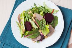 Fresh salad with lettuce leaves, boiled beef, beet, mustard Royalty Free Stock Photos