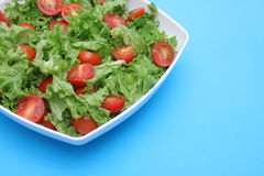 Fresh salad - lettuce and tomatoes. Fresh salad - green lettuce and red tomatoes Stock Photo