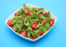 Fresh salad - lettuce and tomatoes. Fresh salad - green lettuce and red tomatoes Royalty Free Stock Photography
