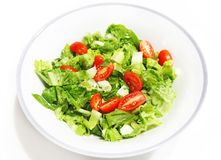 Fresh salad with lettuce and tomatoes isolated on white Royalty Free Stock Photography