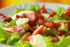 Fresh salad from lettuce, tomatoes, onions, bacon and quail eggs stock photography