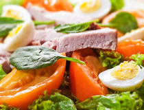 Fresh salad with meat and eggs. Fresh salad with meat and quail eggs Stock Images