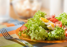 Fresh salad with meat and eggs. Fresh colorful salad with meat and eggs Royalty Free Stock Photos