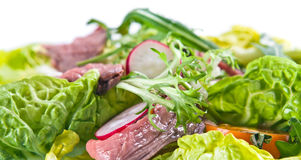 Fresh salad with meat Royalty Free Stock Photography