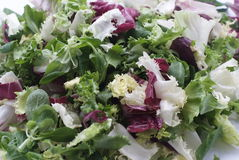 Fresh salad mix top view Stock Photography