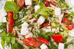 Fresh salad with mozarella Royalty Free Stock Photography