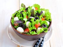 Fresh salad with mozarella cheese, tomatos and olives. Royalty Free Stock Photos