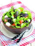 Fresh salad with mozarella cheese, tomatos and olives. Royalty Free Stock Image