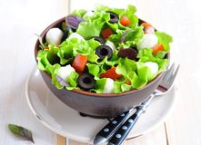 Fresh salad with mozarella cheese, tomatos and olives. Stock Images