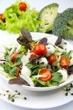 Fresh salad with mozzarella Royalty Free Stock Images