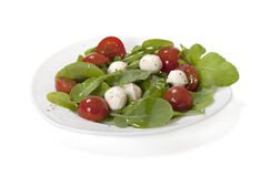 Fresh salad with mozzarella. Salad with mozzarella and arugula, isolated on white background royalty free stock photo