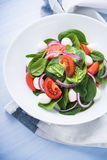 Fresh salad with mozzarella cheese, tomato, spinach and purple onion on blue wooden background close up Stock Images