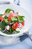 Fresh salad with mozzarella cheese, tomato, spinach and purple onion on blue wooden background close up Stock Photos