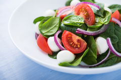 Fresh salad with mozzarella cheese, tomato, spinach and purple onion on blue wooden background close up Royalty Free Stock Photography