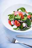Fresh salad with mozzarella cheese, tomato, spinach and purple onion on blue wooden background close up Stock Image