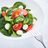 Fresh salad with mozzarella cheese, tomato and spinach on white paper background close up Stock Photography